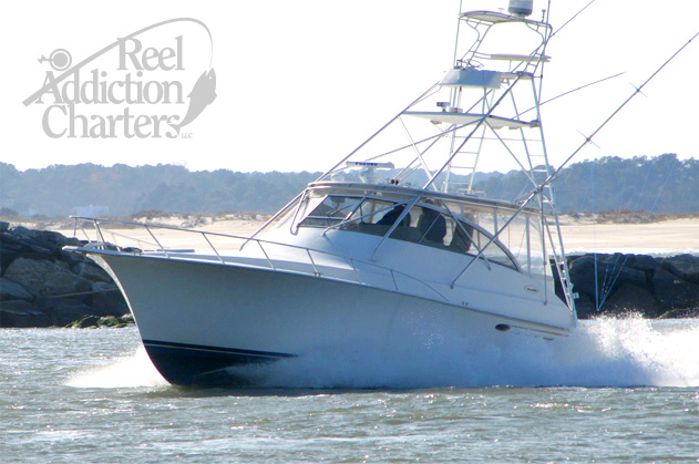Ocean city md fishing charters deep sea fishing charters for Ocean city deep sea fishing