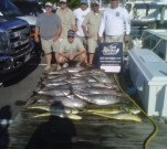 14 Yellowfin and 4 Dolphin